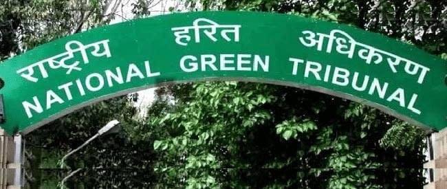 green-tribunal_650_120214063956
